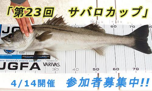 タグ&リリースでシーバス釣り 【サバロカップ】参加者募集中!(4/14)