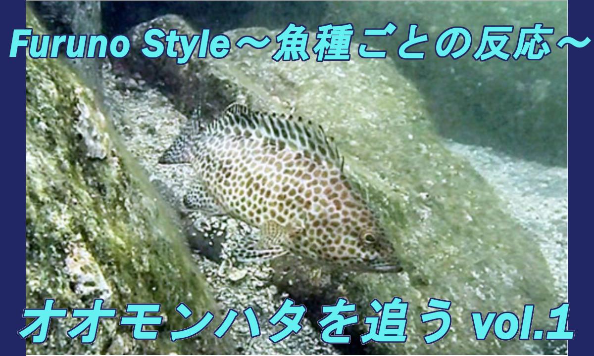 NEW!フルノスタイル~魚種ごとの反応~『オオモンハタを追うvol.1』