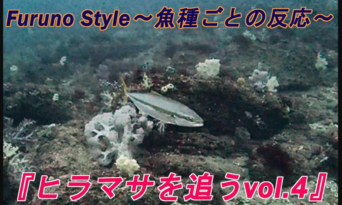 新着!フルノスタイル~魚種ごとの反応~『ヒラマサを追うvol.4』