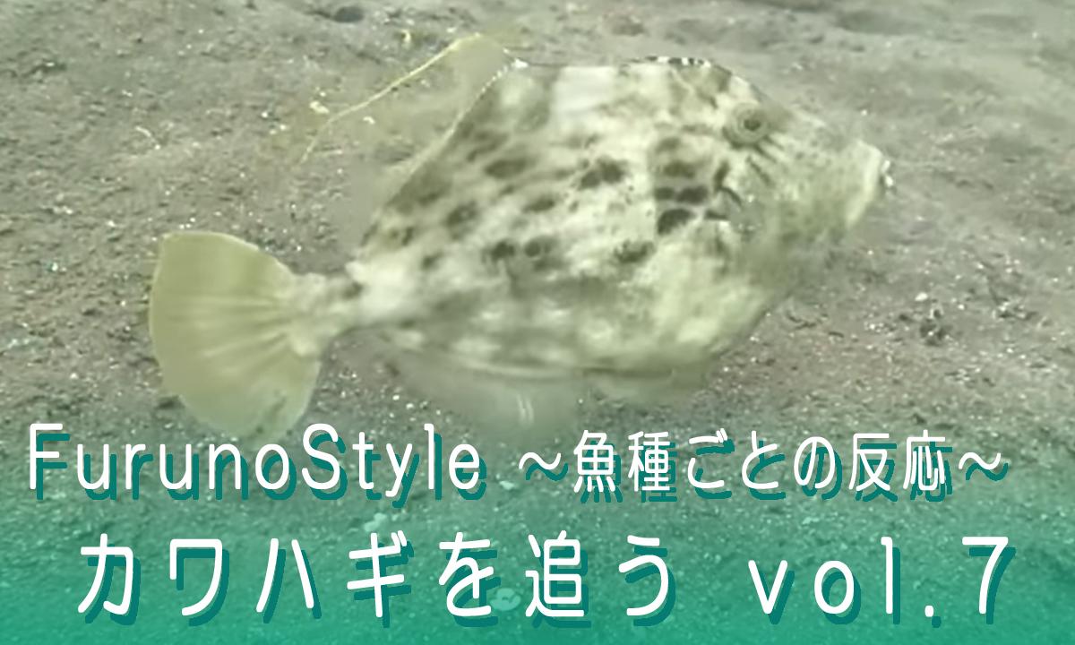 フルノスタイル~魚種ごとの反応~『カワハギを追う vol.7』