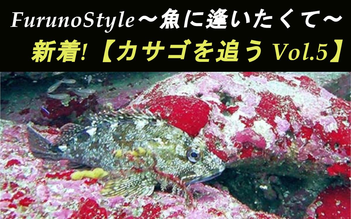 新着!フルノスタイル~魚種ごとの反応~【カサゴを追う Vol.5】