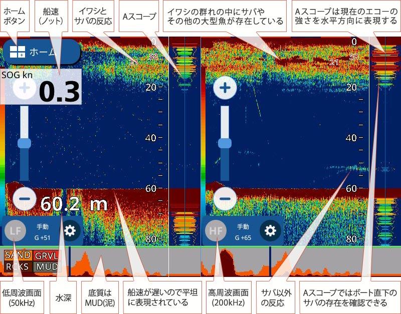 マサバを追う Vol.2魚探画像