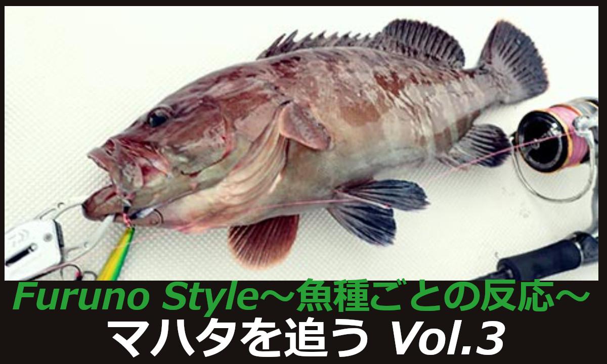 フルノスタイルより新着!~魚種ごとの反応~【マハタを追うVol.3】