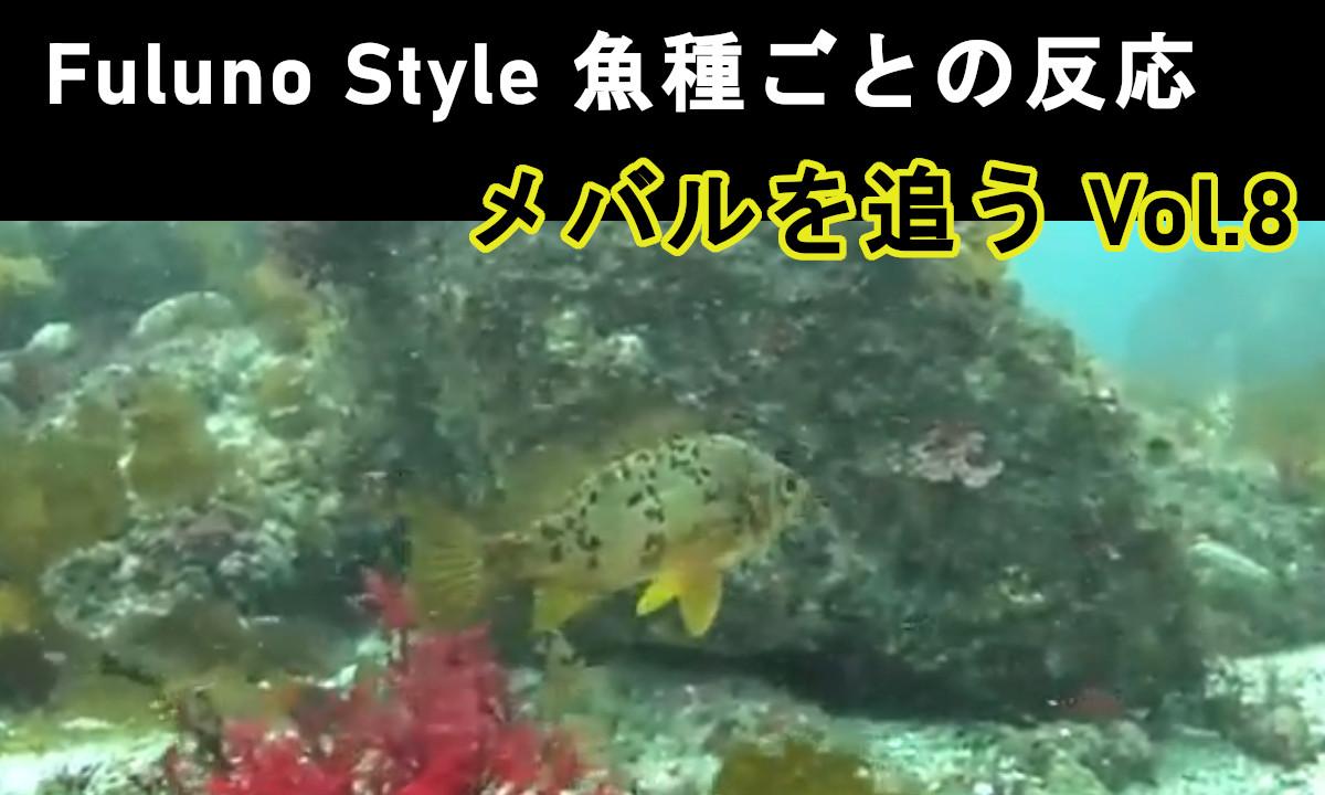 フルノスタイル新着動画!【メバルを追う Vol.8】