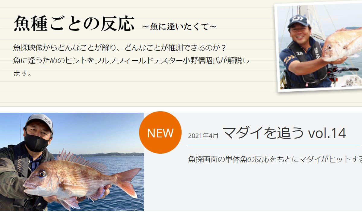 新着!フルノスタイル~魚種ごとの反応~「マダイを追う vol.14」