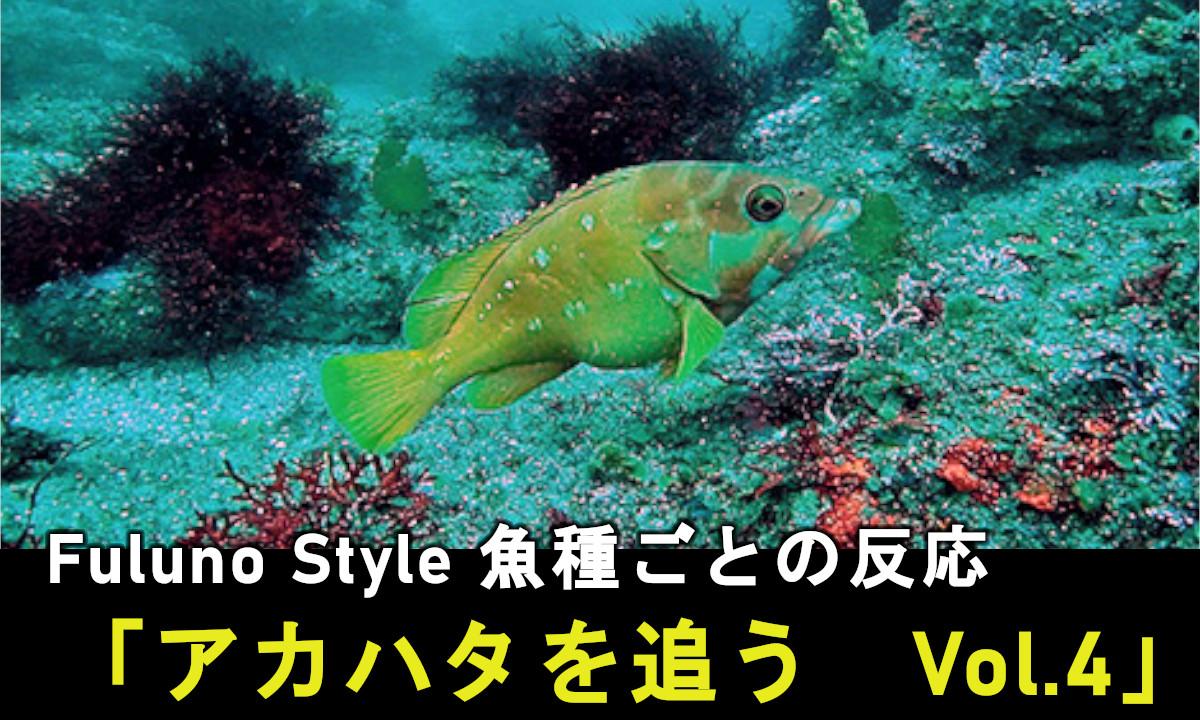 魚探解説「フルノスタイル」新着!【アカハタを追う Vol.4】