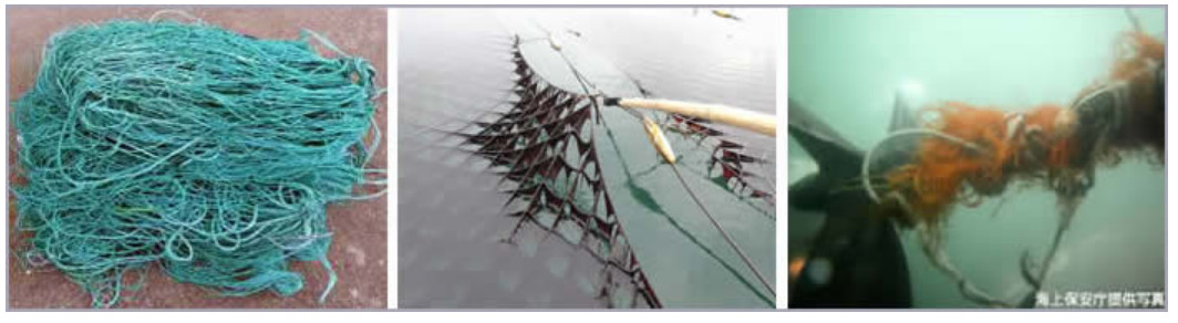 養殖網等の破損
