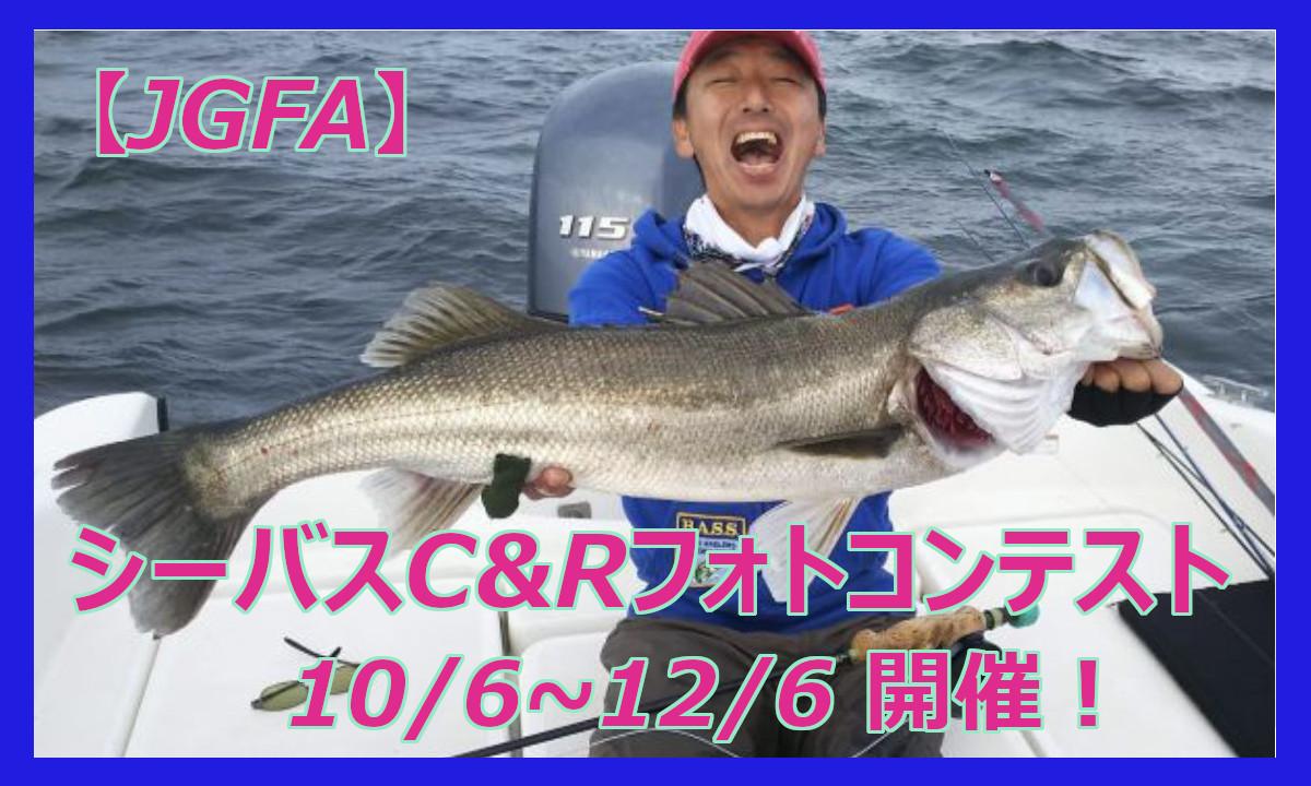 無料のオープン大会!『シーバスC&Rフォトコンテスト』(10/6~12/6)